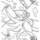 Octopus, An Octopus Quickly Changes Color To Hide Coloring Page: An Octopus Quickly Changes Color to Hide Coloring Page