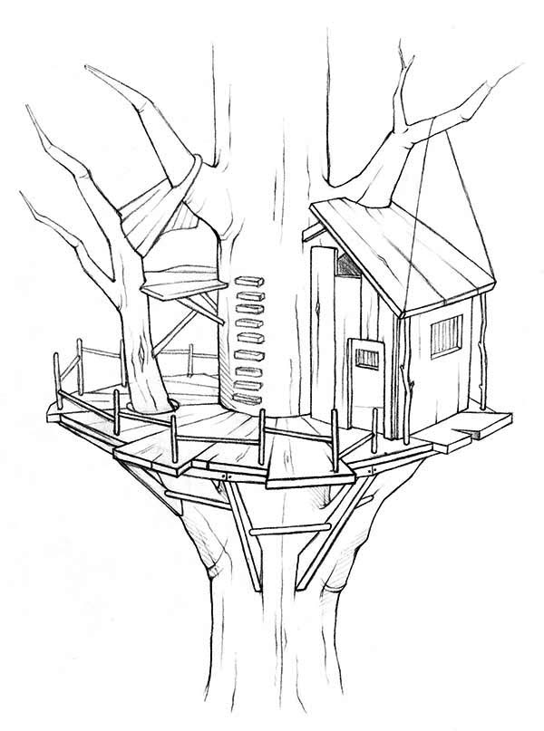 Treehouse, : Awesome Treehouse Coloring Page