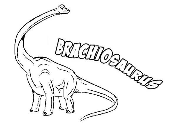 Brachiosaurus, : B is for Brachiosaurus Coloring Page