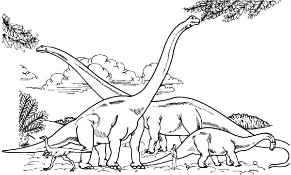 Brachiosaurus, : Brachiosaurus Colony Eating from Tree Branch Coloring Page