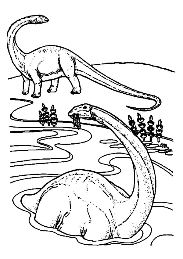 Brachiosaurus, : Brachiosaurus is Swimming Coloring Page