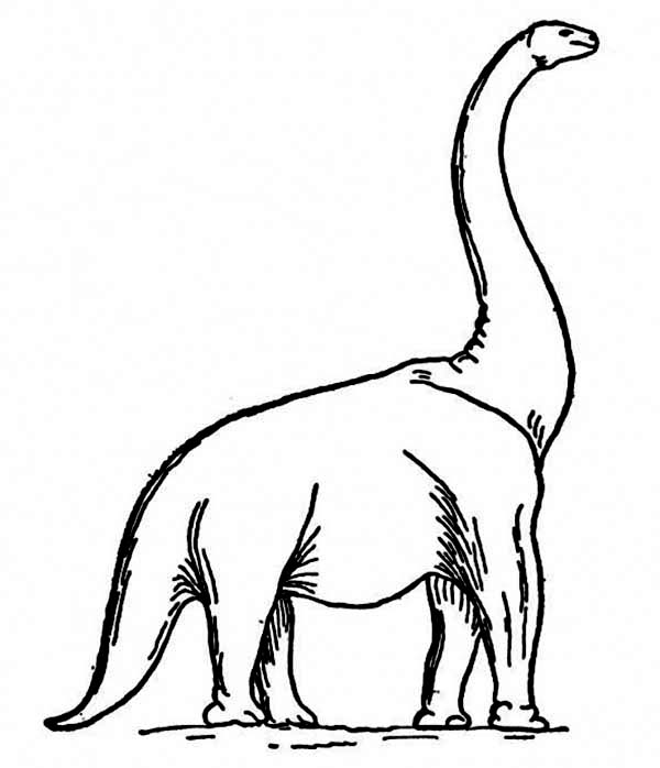 How To Draw A Brachiosaurus Coloring