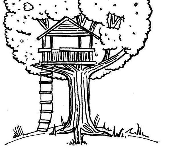 Treehouse, : Kids Drawing of a Treehouse Coloring Page