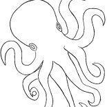 Octopus, Octopus Outline Coloring Page: Octopus Outline Coloring Page