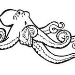 Octopus, Octopus Spread His Legs Coloring Page: Octopus Spread His Legs Coloring Page
