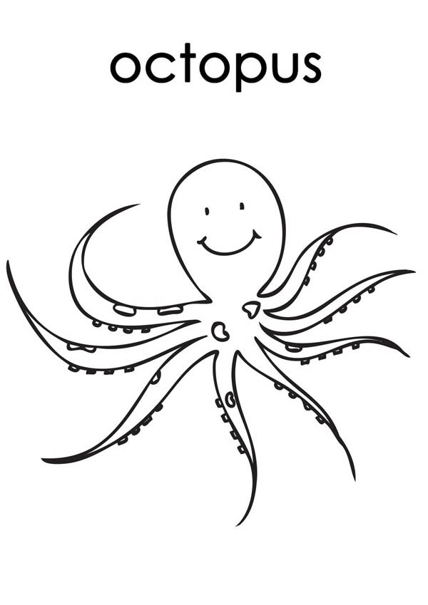Octopus, : Octopus is Smiling Coloring Page