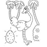 Ostrich, Ostrich Egg Coloring Page: Ostrich Egg Coloring Page