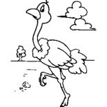 Ostrich, Ostrich Walking Around Coloring Page: Ostrich Walking Around Coloring Page