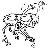 Ostrich, Ostrich Is On Race Coloring Page: Ostrich is on Race Coloring Page