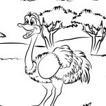 Ostrich, Ostrich On The Meadow Coloring Page: Ostrich on the Meadow Coloring Page