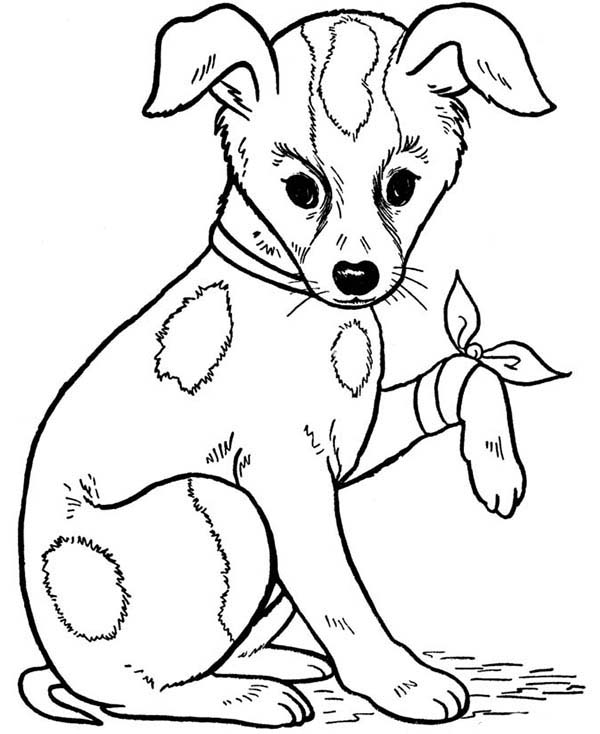 Dogs, : A Dog Injured at Leg Coloring Page