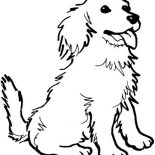 Dogs, A Happy Dog Coloring Page: A Happy Dog Coloring Page