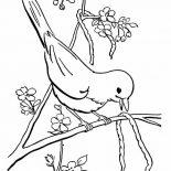 Birds, Bird Eat Little Snake Coloring Page: Bird Eat Little Snake Coloring Page