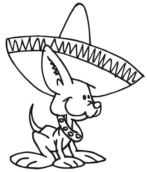 Dogs, : Cute Little Dog Wearing Mexican Hat Coloring Page