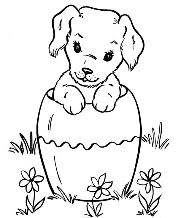 Dog Hiding In Big Vase Coloring Page Color Luna