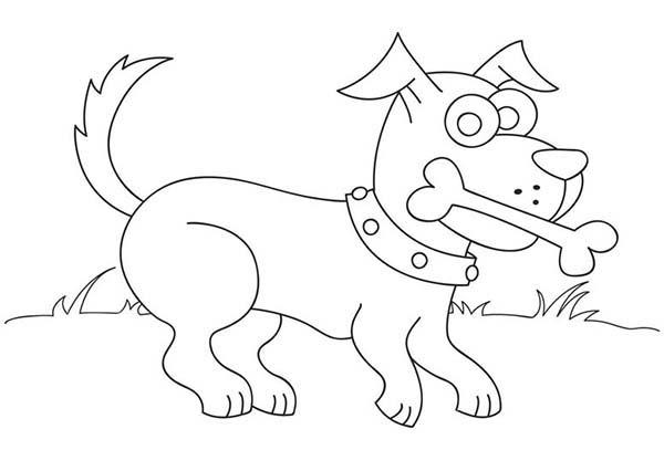 Dog Love Eating Bone Coloring Page : Color Luna