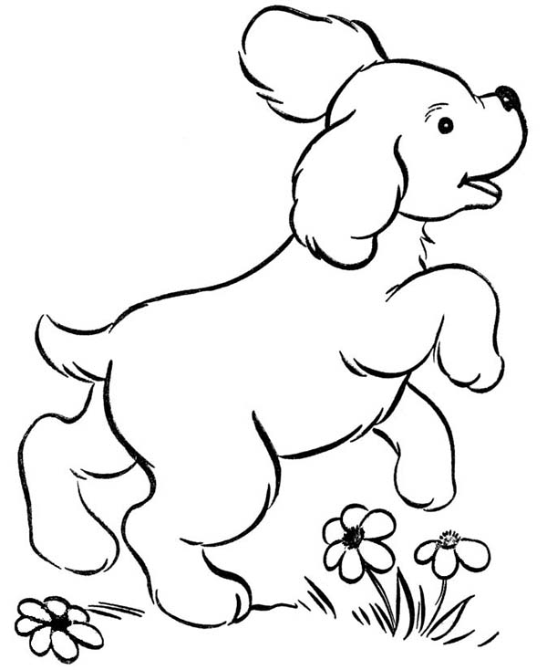Dogs, : Dog Playing in the Garden Coloring Page