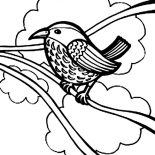 Birds, How To Draw Bird Coloring Page: How to Draw Bird Coloring Page