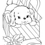 Dogs, Little Dog Came From Present Box Coloring Page: Little Dog Came from Present Box Coloring Page