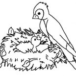 Birds, Mother Of Bird Feeding Her Baby Coloring Page: Mother of Bird Feeding Her Baby Coloring Page