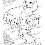 Dogs, Mother Of Dog Watching Her Puppy Play Coloring Page: Mother of Dog Watching Her Puppy Play Coloring Page