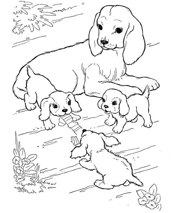 Dogs, : Mother of Dog Watching Her Puppy Play Coloring Page