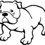 Dogs, Pitbull Dog Coloring Page: Pitbull Dog Coloring Page