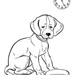 Dogs, The Dog Is So Hungry Coloring Page: The Dog is so Hungry Coloring Page