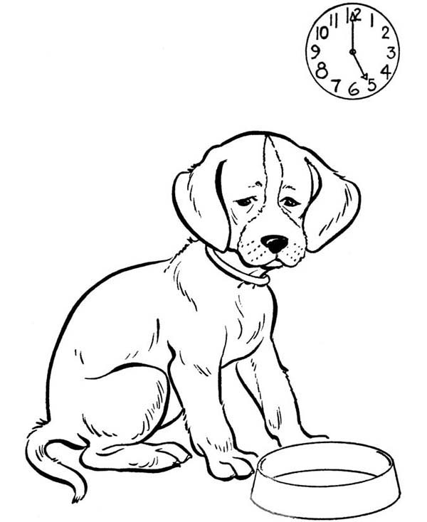 Dogs, : The Dog is so Hungry Coloring Page