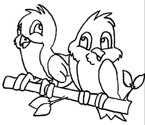 Birds, : Two Bird Having Conversation Coloring Page