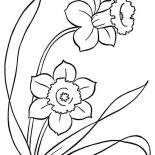 Spring Flower, Awesome Drawing Of Spring Flower Coloring Page: Awesome Drawing of Spring Flower Coloring Page