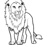 Lion, Awesome Lion Drawing Coloring Page: Awesome Lion Drawing Coloring Page