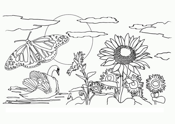nature coloring pages print - photo#41