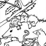 Possum, Big Family Of Possum Coloring Page: Big Family of Possum Coloring Page