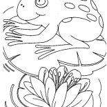 Lily Pad, Big Frog Sitting Comfortably On Lily Pad Coloring Page: Big Frog Sitting Comfortably on Lily Pad Coloring Page