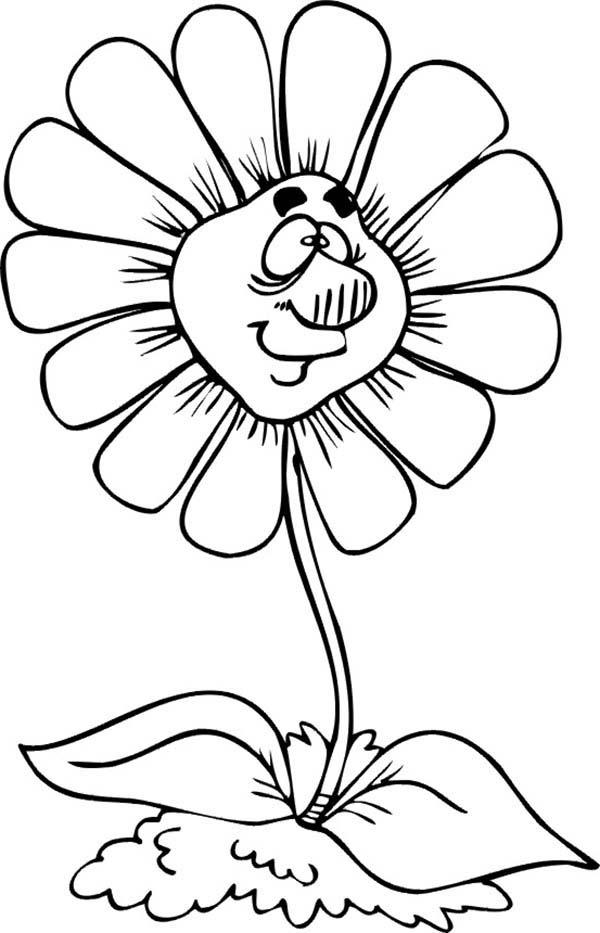 Spring Flower, : Big Nosed Spring Flower Coloring Page