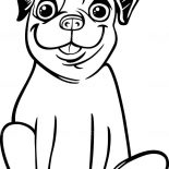 Pug, Big Smile Of Pug Coloring Page: Big Smile of Pug Coloring Page