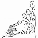 Nature, Bunny Smelling Flower Of Nature Coloring Page: Bunny Smelling Flower of Nature Coloring Page