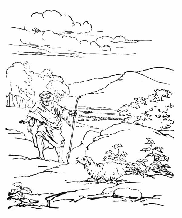 Parable of the Sower, : Depiction of Parable of the Sower Coloring Page