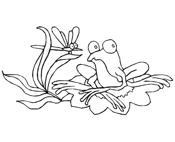 Lily Pad, : Drawing Frog on Lily Pad Coloring Page
