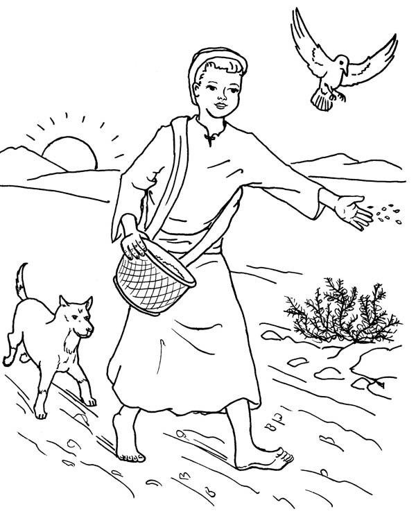 Parable of the Sower, : Farmer Scattered Seed Among Thorns in Parable of the Sower Coloring Page
