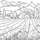 Nature, Flower Field Of Nature Coloring Page: Flower Field of Nature Coloring Page