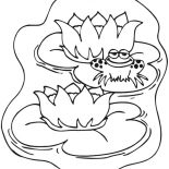 Lily Pad, Frog Smile While Sitting On Lily Pad Coloring Page: Frog Smile While Sitting on Lily Pad Coloring Page