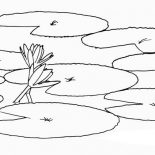 Lily Pad, How To Draw Lily Pad Coloring Page: How to Draw Lily Pad Coloring Page