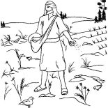 Parable of the Sower, Land Where So Much Bush In Parable Of The Sower Coloring Page: Land Where so Much Bush in Parable of the Sower Coloring Page