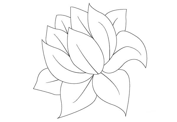 Lily Pad, : Lily Pad without Lily Pad Coloring Page