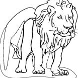 Lion, Lion Coloring Page For Kids: Lion Coloring Page for Kids