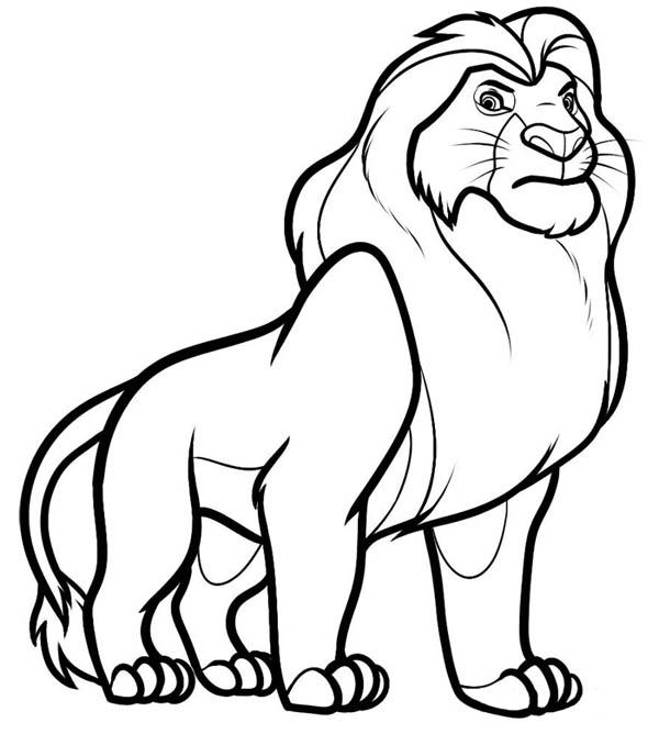 Lion, : Lion King Coloring Page
