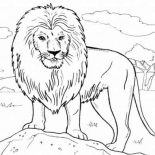 Lion, Lion Standing On A Rock Coloring Page: Lion Standing on a Rock Coloring Page