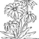 Nature, Lovely Flower Of Nature Coloring Page: Lovely Flower of Nature Coloring Page